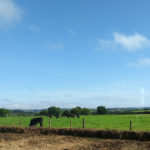 Hardwick View - markstonefarm.co.uk