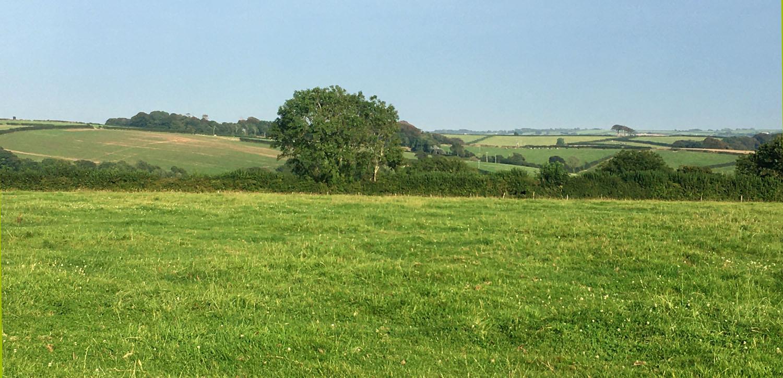 Camping field - markstonefarm.co.uk